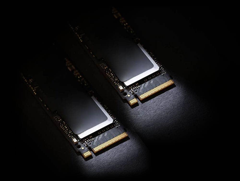 Dual NVMe SSD Storage